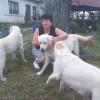 Poza Femeie Satu Mare