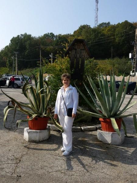 florentinaflorentina1, femeie, 50 ani, Resita