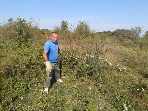 Nicolaiescu61, barbat, 57 ani, Pitesti