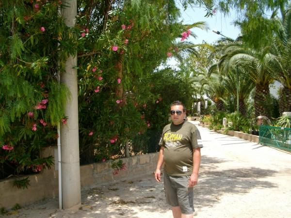 sergiu972, barbat, 49 ani, Botosani