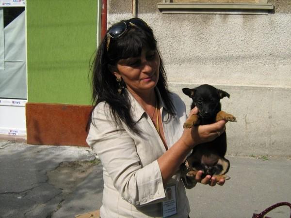 diana25w, femeie, 54 ani, Satu Mare
