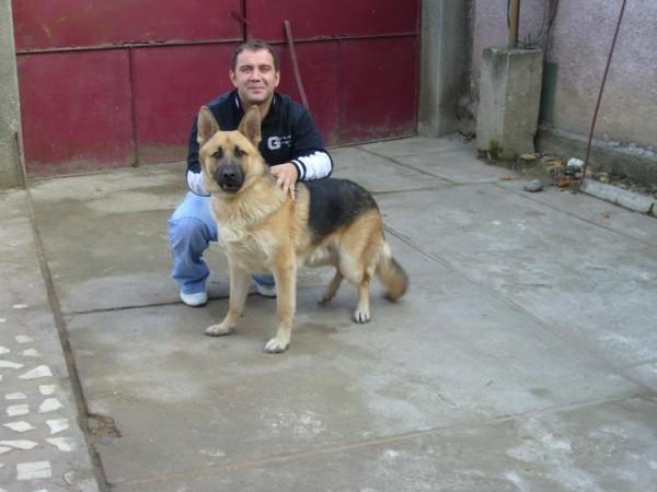 paulyka29, barbat, 38 ani, Alba Iulia