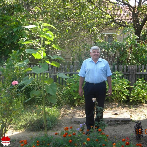 romiblueeyes, barbat, 67 ani, Baia Mare